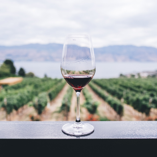 If You're Going to Drink Wine, Drink Organic Wine. Here's Why.
